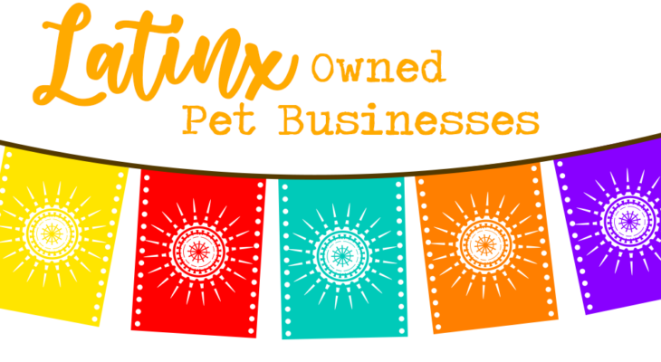 Latinx owned pet businesses